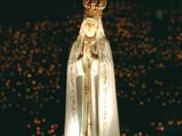 NS Fatima 3