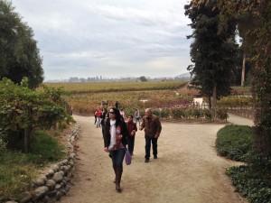 O grupo visita vinícolas em Santiago